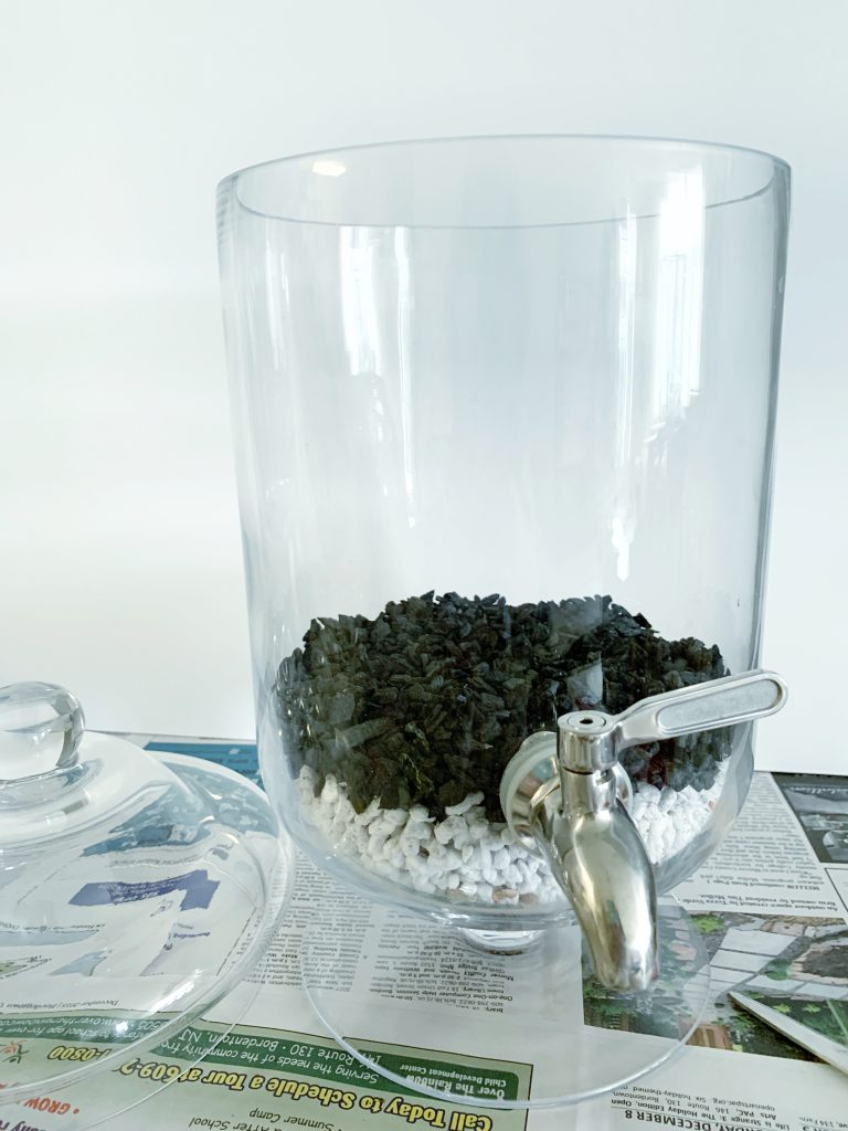 terrarium with charcoal inside