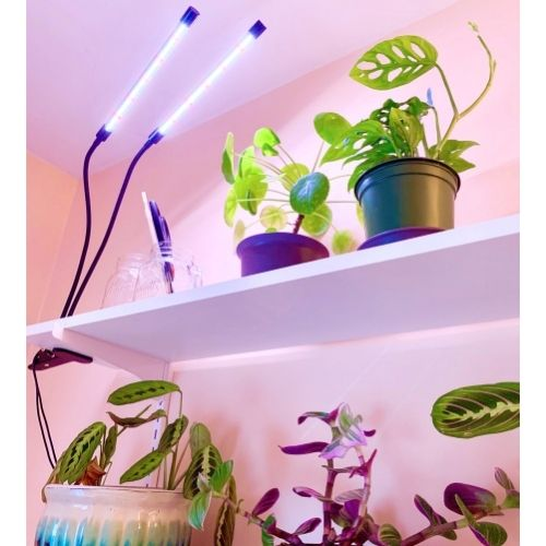 grow lights for plants