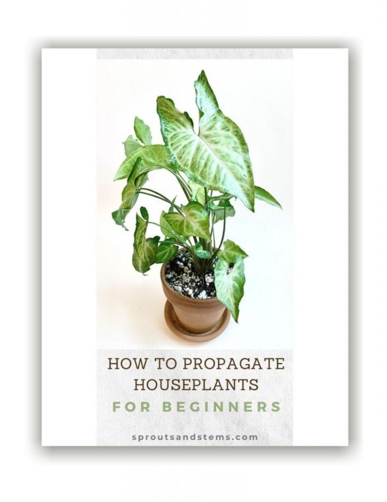 Propagation ebook cover