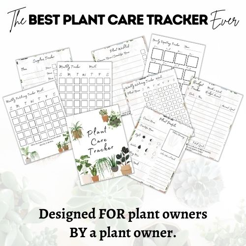 plant care tracker journal