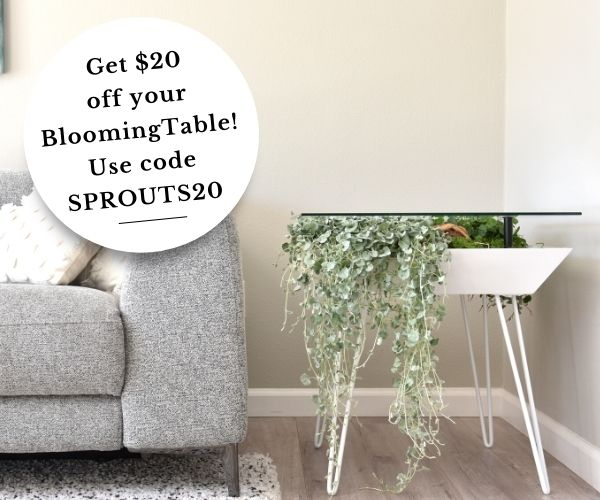blooming tables discount