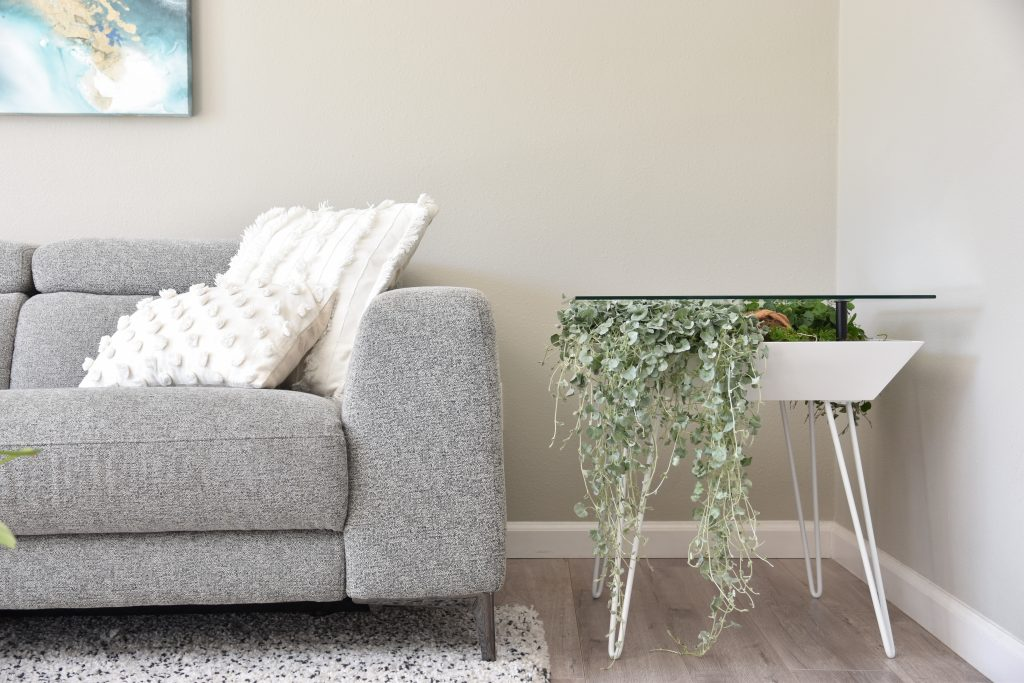bloomingtables with ivy next to couch