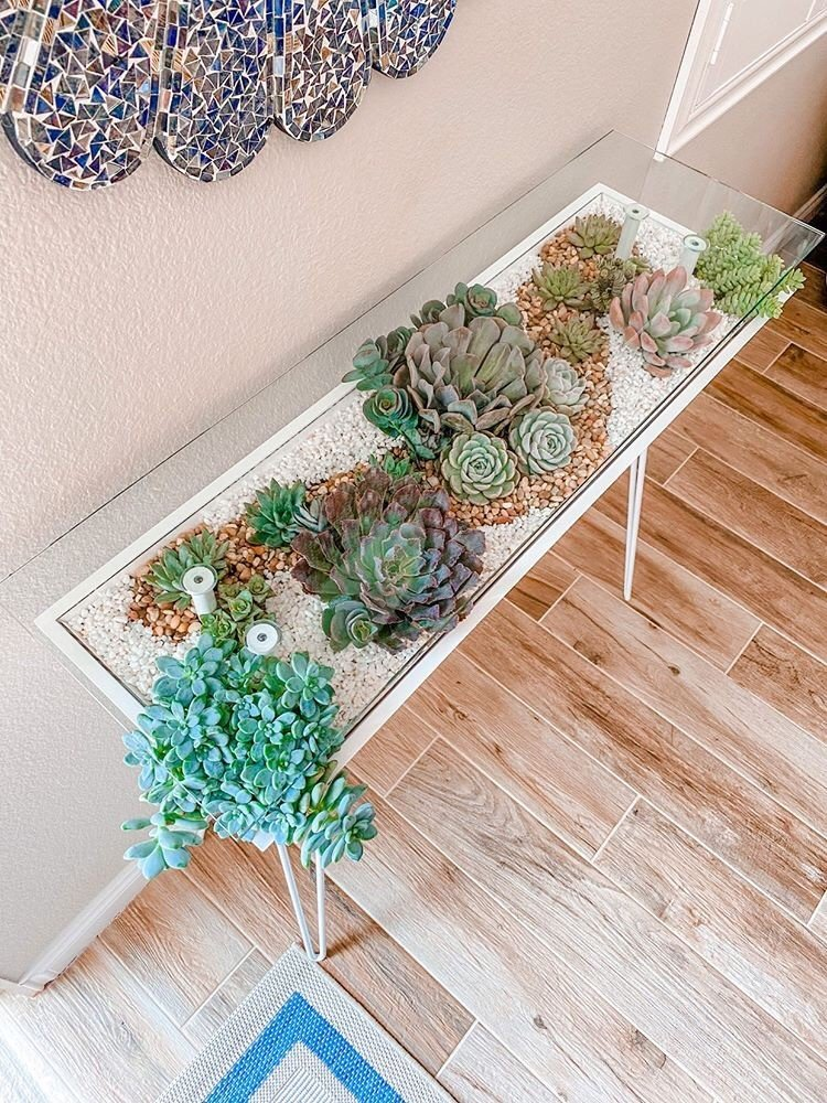 bloomingtables entryway table with succulents