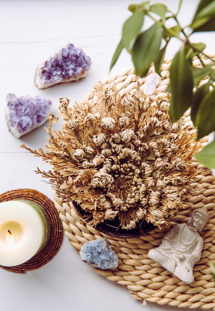 Resurrection Plant on a table with crystals and a candle